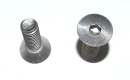 windshield hinge bolts